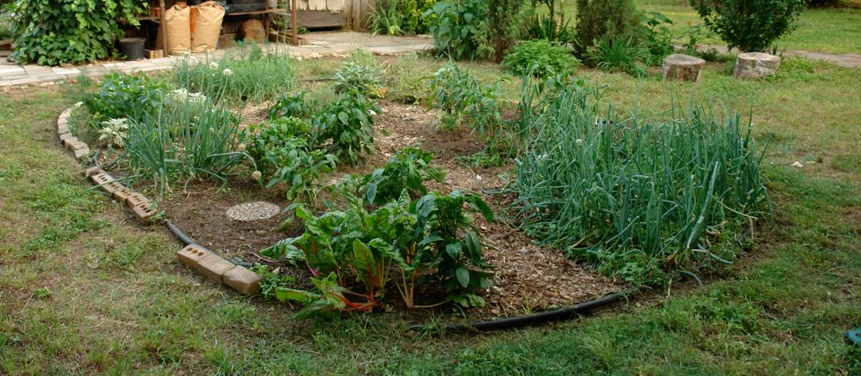 A Vegetable Garden. Because we need to cultivate good faith. Sorry! Bad pun is bad...